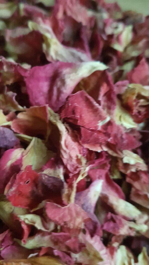 Amore biodegradable confetti